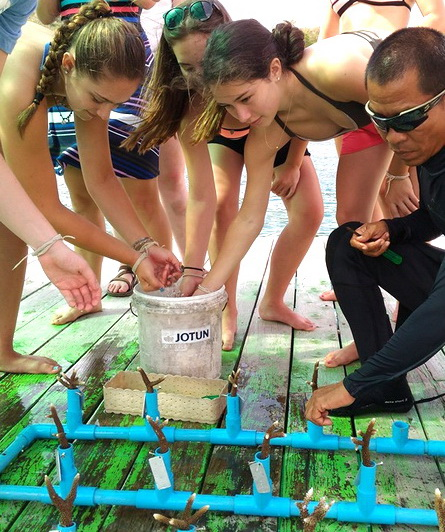 student trip thailand coral planting
